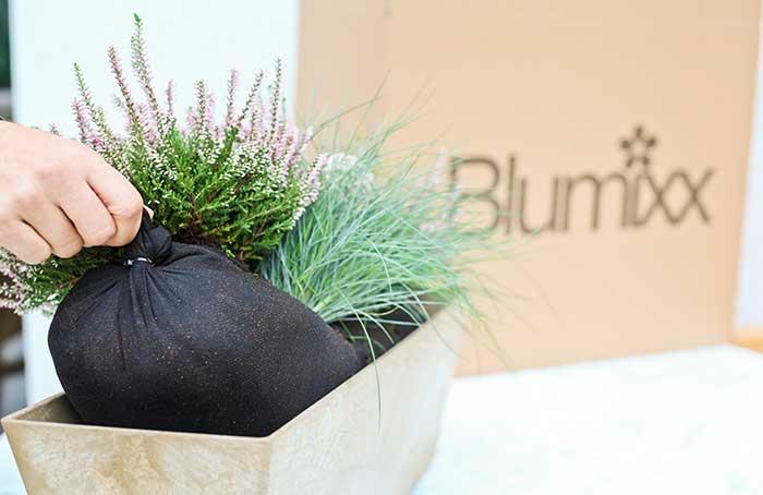 blumixx-stroy-first-bags
