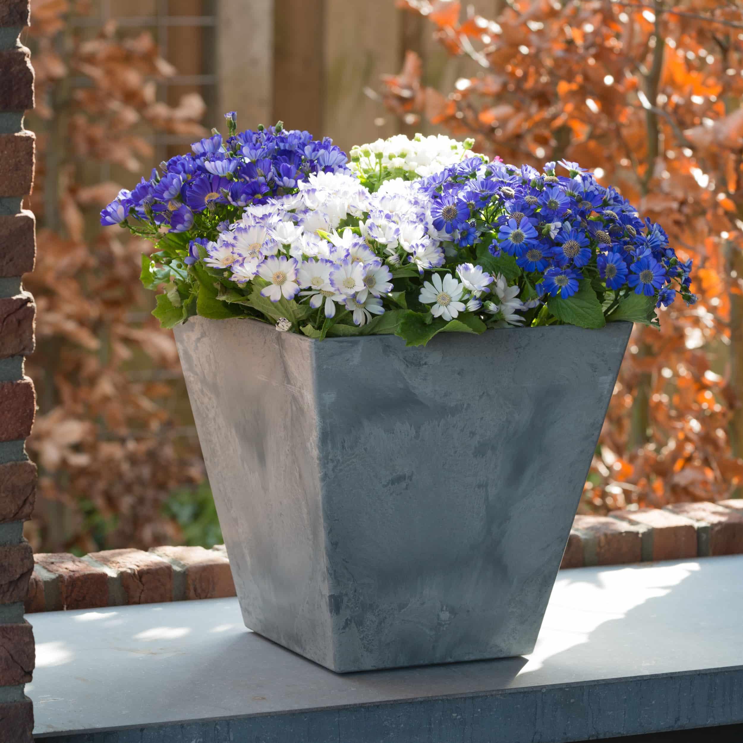 Blumenkübel Ella L30cm grau