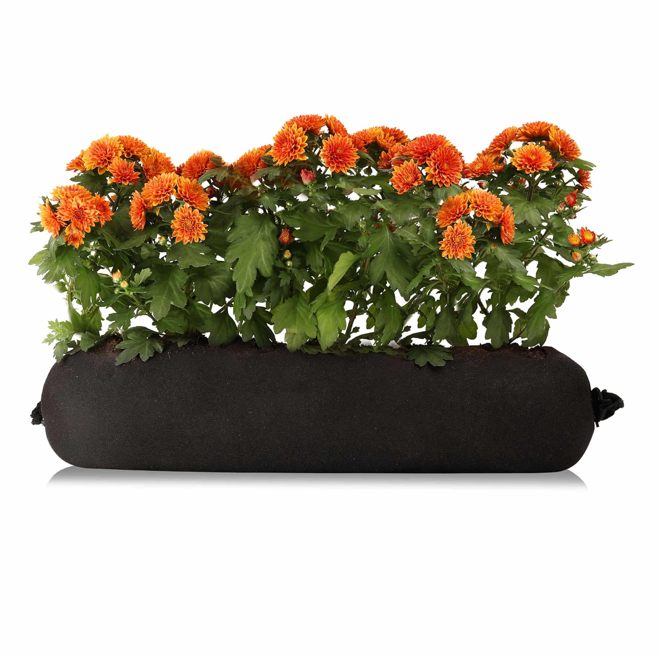 "Chrysanthemen-Bag ""Charlie"""