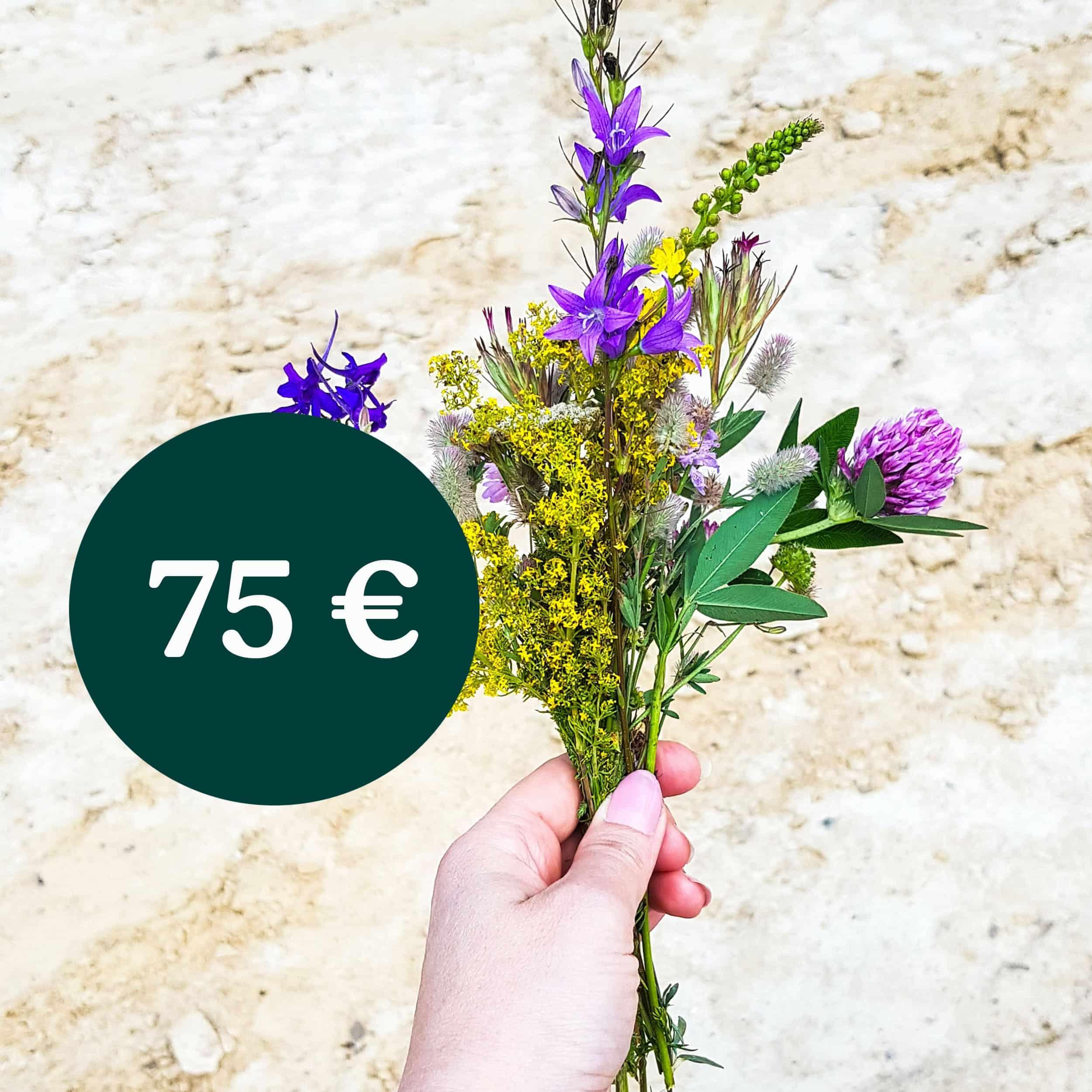 Geschenkgutschein-Code (75,-€)