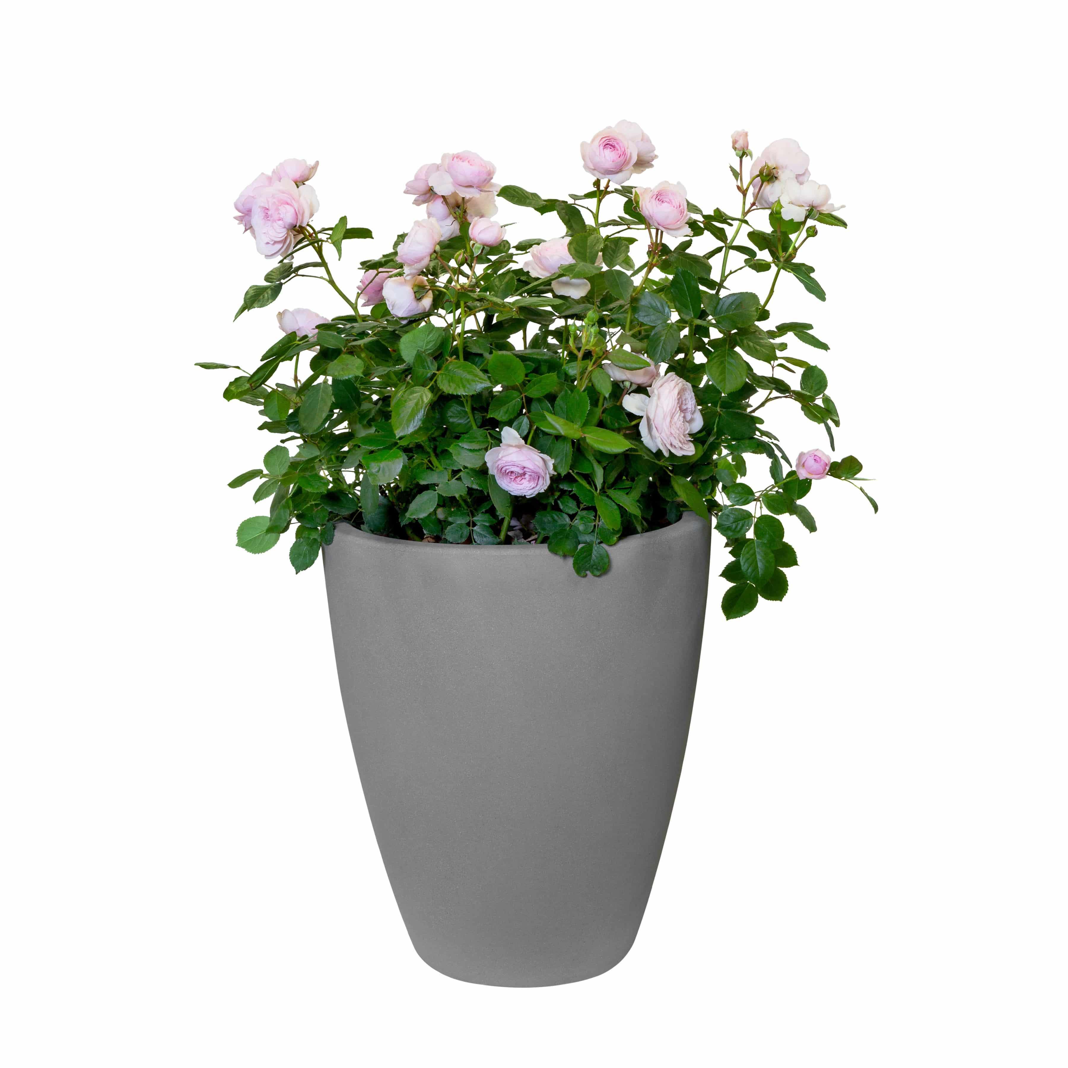 Blumenkübel Allure Ellips D35cm