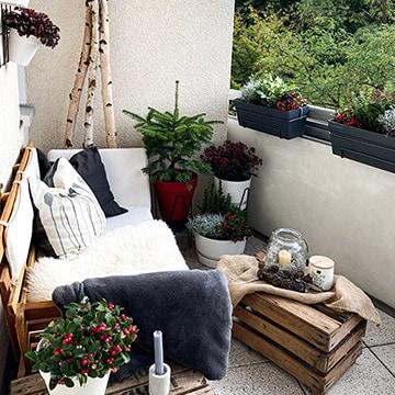 blumixx-magazin-balkongestaltung-winter