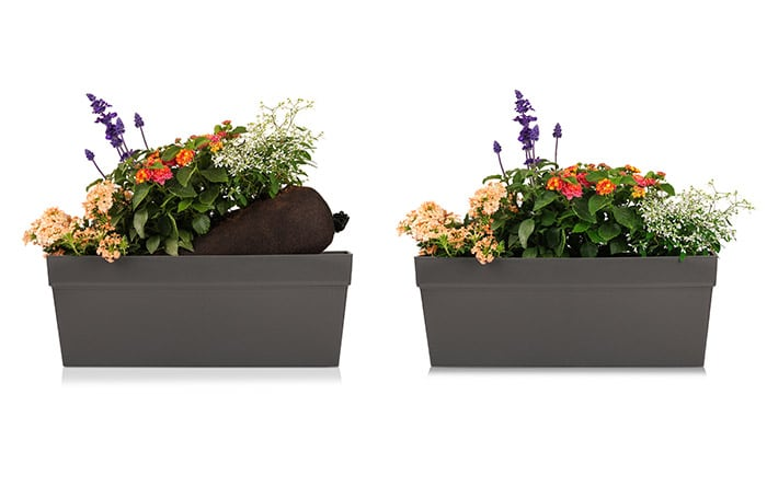 blumixx-bag-balkonbepflanzung-per-post